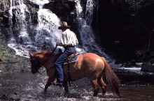Siwash Lake Ranch - Rider and waterfalls